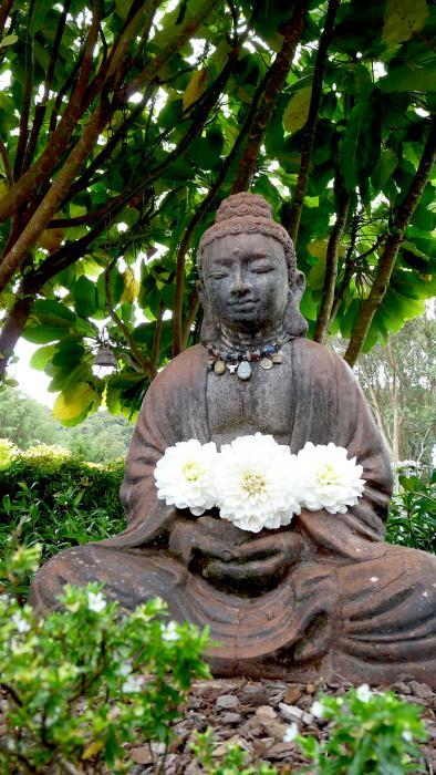 A Zen Master does not argue.